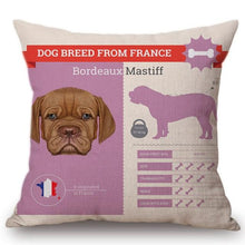 Load image into Gallery viewer, Know Your Russian Spaniel Cushion Cover - Series 1Home DecorOne SizeBordeaux Mastiff