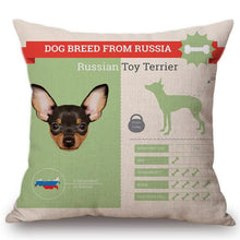Load image into Gallery viewer, Know Your Russian Toy Terrier Cushion Cover - Series 1Home DecorOne SizeRussian Toy Terrier
