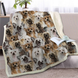 Sweetest Papillon Dreams Warm Blanket - Series 2