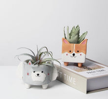 Load image into Gallery viewer, Husky and Shiba Inu Love Succulent Plants Flower Pots