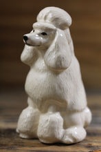 Load image into Gallery viewer, Beautiful Chihuahua Love Salt and Pepper Shakers - Series 1