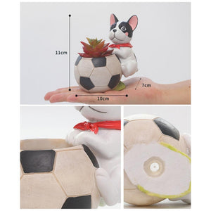 Sports Pug Succulent Plants Flower Pot