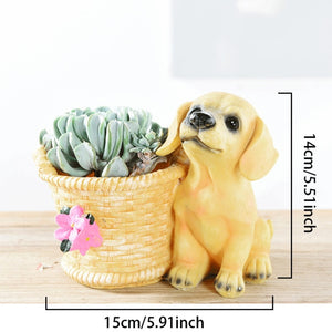 Cutest Yorkshire Terrier Love Succulent Flower Pot - Series 2