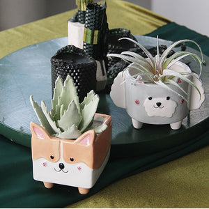 Husky and Shiba Inu Love Succulent Plants Flower Pots