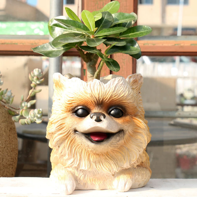 Beautiful Pomeranian Love Decorative Flower Pot
