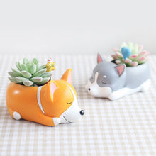 Load image into Gallery viewer, Cutest Dachshund Love Succulent Plants Flower Pot