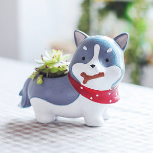 Cutest Corgi wearing Backpack Love Succulent Plants Flower Pots