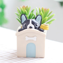 Load image into Gallery viewer, Cutest Corgi wearing Backpack Love Succulent Plants Flower Pots