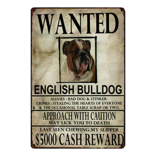 Wanted English Bulldog Approach With Caution Tin Poster - Series 1