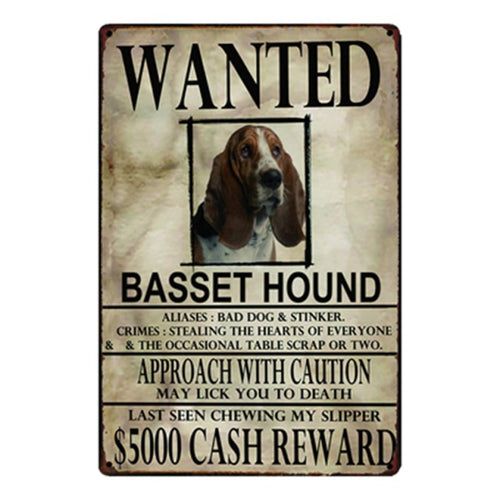 Wanted Basset Hound Approach With Caution Tin Poster - Series 1