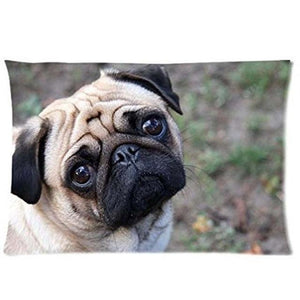Queen Size Large Curious Pug Cushion Cover - Series 1Cushion CoverPugOne Size