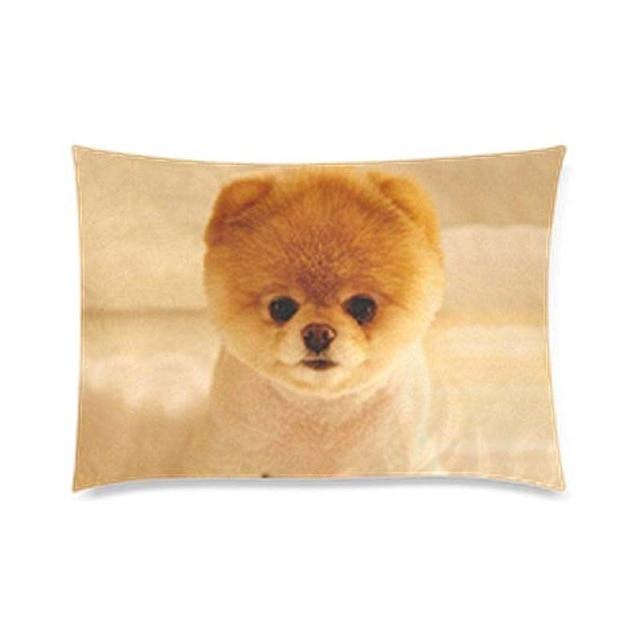 Queen Size Large Yellow Pomeranian Cushion Cover - Series 1Cushion CoverPomeranianOne Size
