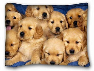 Queen Size Rectangular Large Cushion Covers for Dog Lovers - Series 1Cushion CoverLabrador PuppiesOne Size