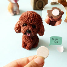 Load image into Gallery viewer, Smiling White Toy Poodle / Cockapoo / Labradoodle Resin Bobble HeadCar Accessories