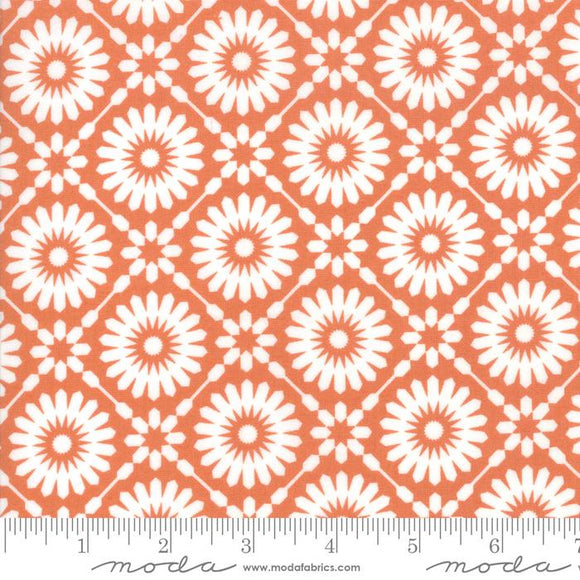 Moda Fabrics Midnight Magic Pumpkin 14080 12