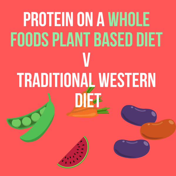Protein on a Whole Foods Plant Based Diet v Traditional Western Diet