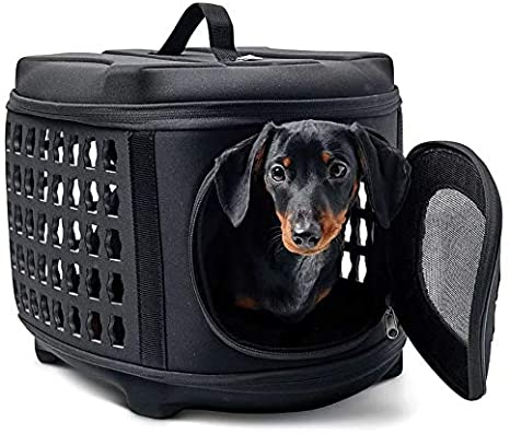GF Pet - Collapsable Carrier