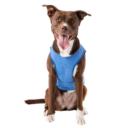 GF Pet - Elastofit® Ice-Vest®