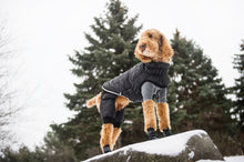 Load image into Gallery viewer, GF Pet - Creekside Snowsuit