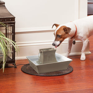 PetSafe - Drinkwell Pergoda Pet Fountain - Taupe