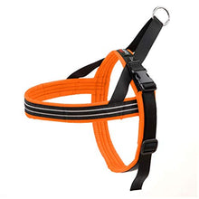 Load image into Gallery viewer, Comfort Flex Harness - Made in USA - Hunter Orange