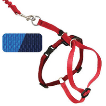 Load image into Gallery viewer, PetSafe - Come With Me Kitty Harness and Bungee Leash