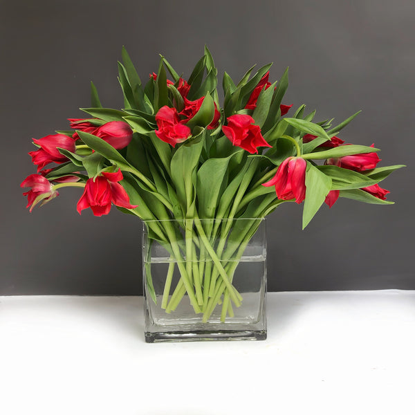 flower deivery same day nyc - manhattan florist - send tulips new york - buy tulips nyc - florist 10019