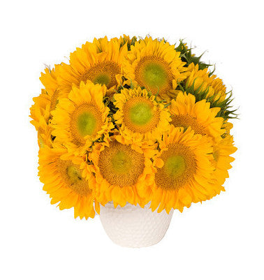 Sunflower Paradise Flower Arrangement - same day flower delivery and gift crate basket delivery Manhattan Midtown NYC New York 10019 10022