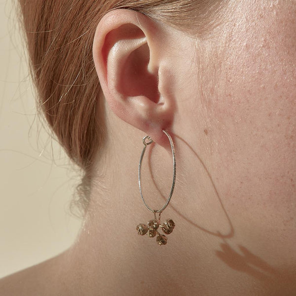 Abby Seymour — Silver and Brass Gumnut Hoop Earrings - Australian made Jewellery