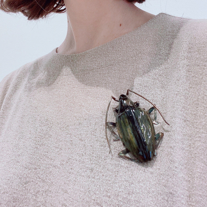 Samantha Dennis — Coleoptera Green/Yellow Beetle Brooch - Australian made Jewellery