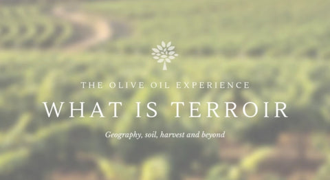 What is Terroir. The ID of Olive Oil.