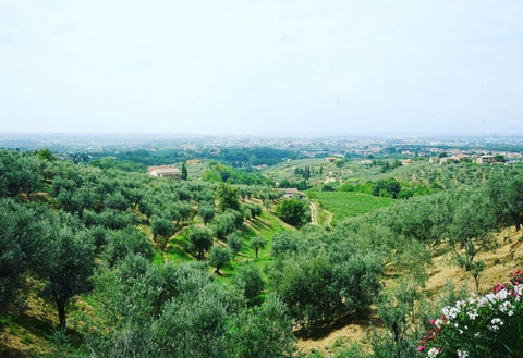 View from Montalbano Valley in Porciano, Tuscany