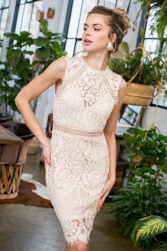 Juliana Crochet Lace Dress In Blush Siin Bees