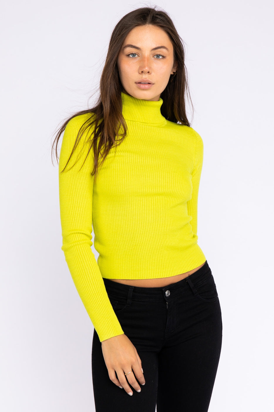 Turtleneck Long Sleeve Ribbed Knit Top In Lime Siin Bees
