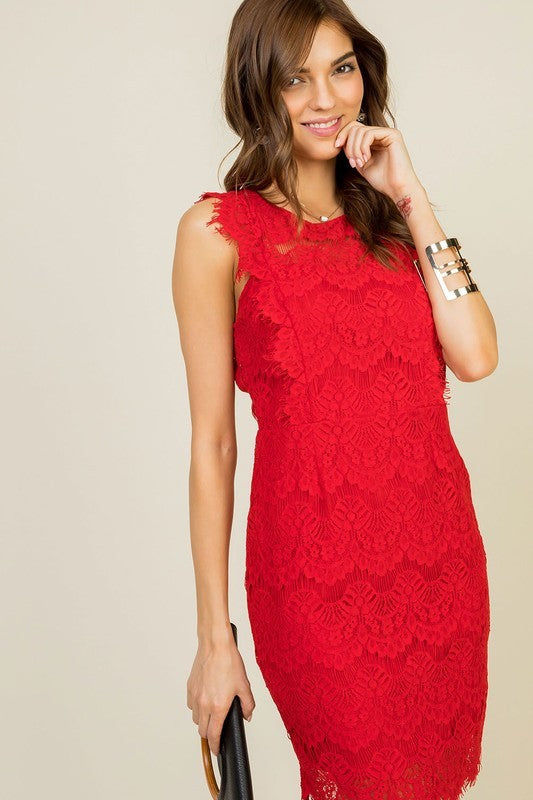 Chloe Scallop Edge Lace Trim Back Open with Zipper Dress Siin Bees