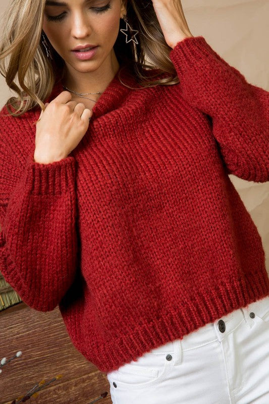 Brick Crew Neck Dolman Sleeve Basic Solid Ribbed Sweater Siin Bees