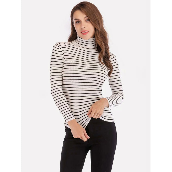 Striped Turtleneck Slim Jumper