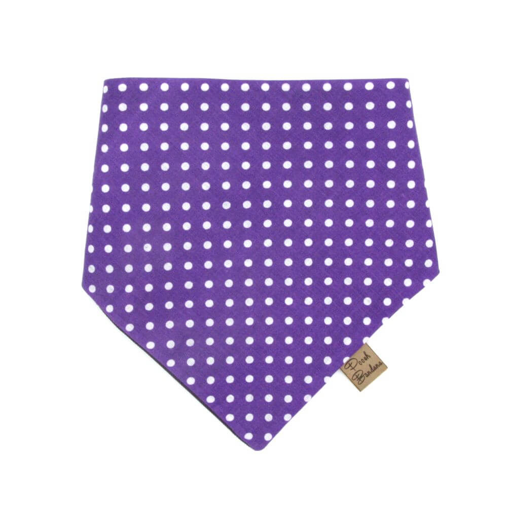 Polka Dot Dog Bandana Purple