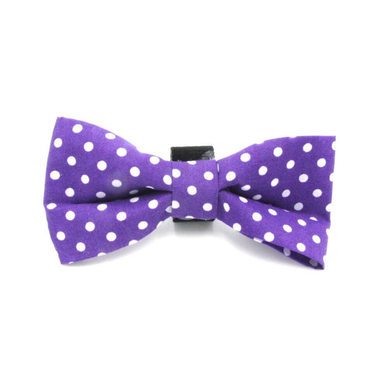 Polka Dot Dog Bow Tie Purple