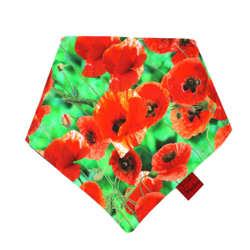 Poppy Dog Bandana