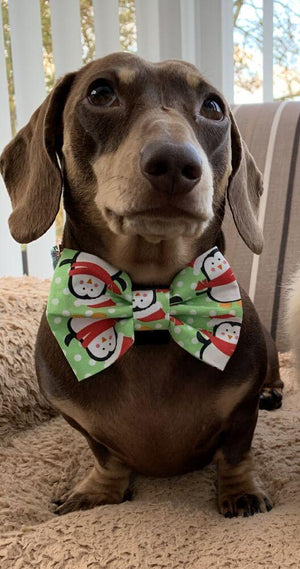 Penguin Christmas Dog Bow Tie Green