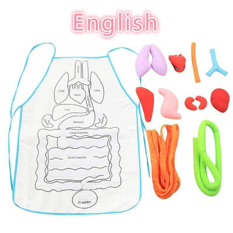 New Anatomy Apron - Get Yours Here