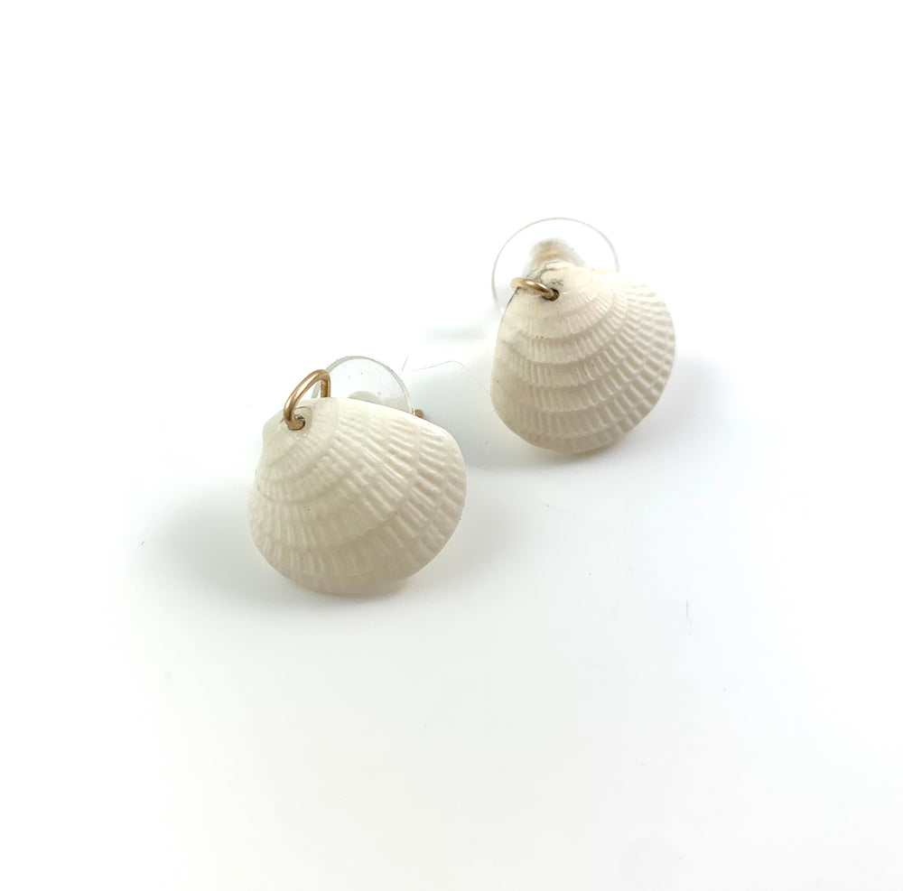 Mini White Clamshell Earrings