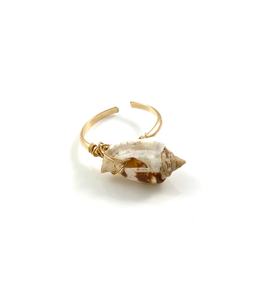 Adjustable Hawaiian Single Shell Ring