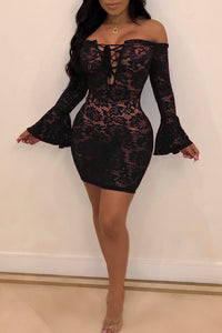 Pomiss Sexy  See-through  Black Lace  Mini Dress