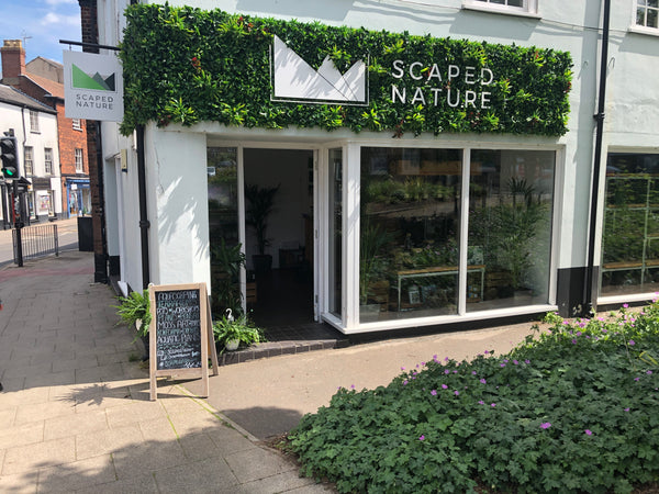 Scaped Nature Storefront