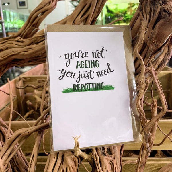 Greeting card - Just need repotting