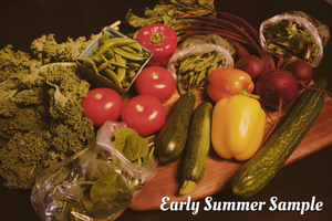Spring Greens and Veggies Subscription | 9 Weeks (April 4 - May 30)