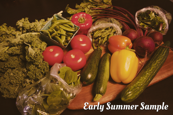 Summer Greens and Veggies Subscription | 12 Weeks (June 13 - August 29)