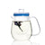 Glass Teapot with Infuser and Lid 500ml - Lucera
